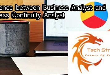 Business-continuity-analyst