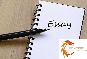 Essay-Writing-Ideas