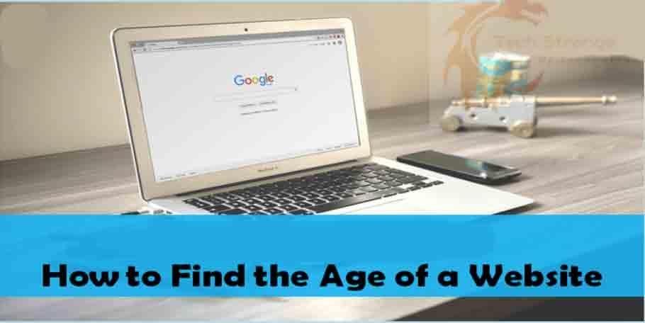 domain-age-checker