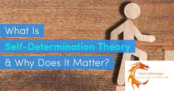 How-Self-Determination-Theory-Can-Improve-Your-Motivation-as-an-Effective-Student-